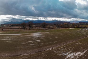 Wet agricultural fields from high perspective.