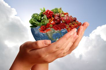 Two hands holding fruitful earth