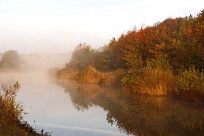 Misty fall_20