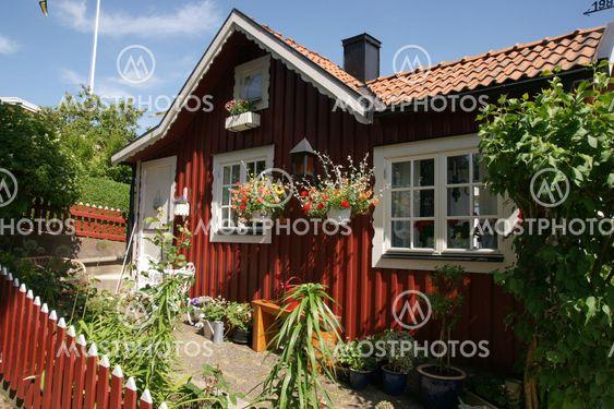 The swedish dream...