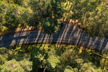 Aerial top down view of a forest road and long shadows