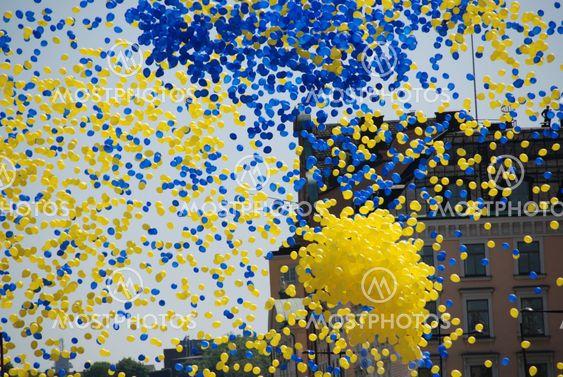 Swedish national day, 6 June 2008