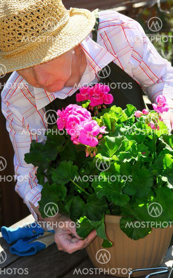 Højtstående kvinde havearbejde