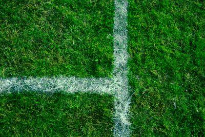 field lines