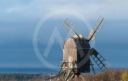 Höstsol på en traditionell väderkvarn på Öland