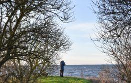 Fågelskådare vid kusten på södra Öland