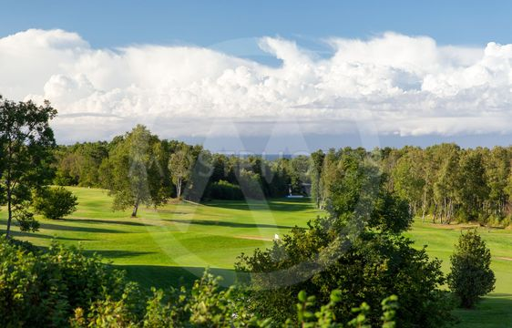 natural landscape with golf field or course view