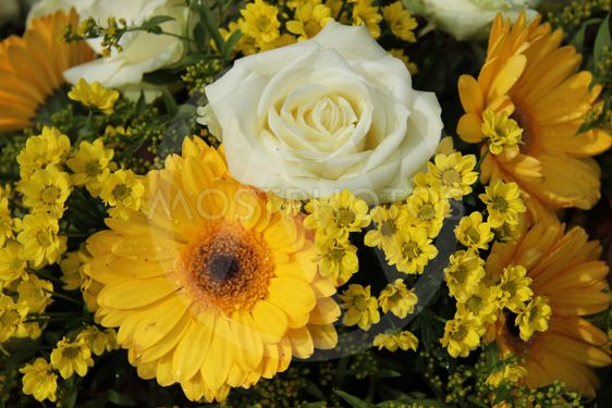 White roses and yellow gerberas