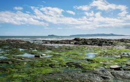 Low tide on Irish coast.