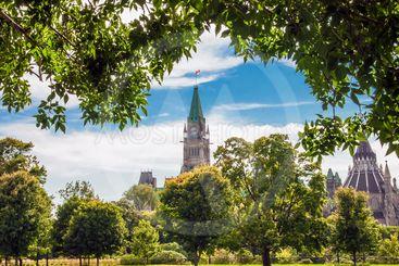 Parliament Park View