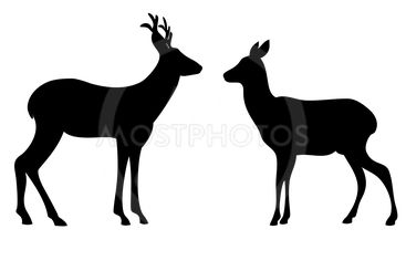 Two roes love silhouettes