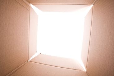 inside the cardboard box