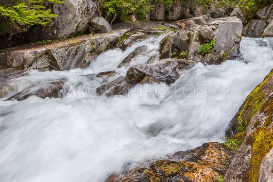 Rapids on the Paradise River