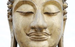 Close-up head of buddha statue.