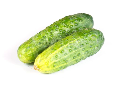 two cucumbers isolated