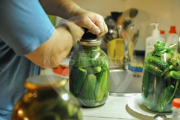 People are preparing in the kitchen. pickling cucumbers,...