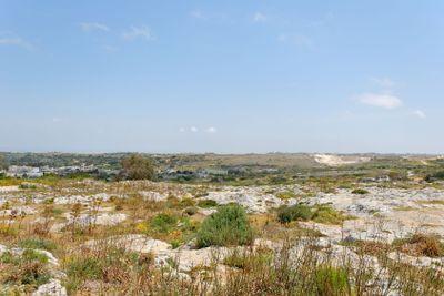 Maltese Stony Landscape