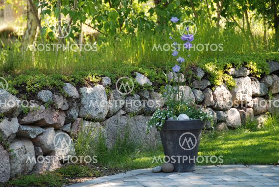 flowers against stone wall
