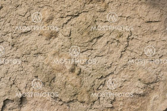 Old weathered sandstone background