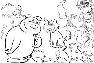 wild forest animals for coloring book