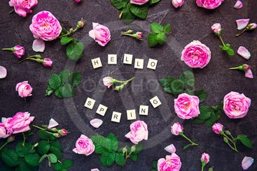 Hello Spring lettering with wooden blocks and fresh...
