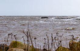 Stormen Dennis på Hallandskusten - Silvertid