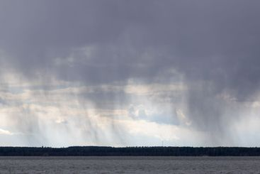 Rain coming from heavy grey clouds