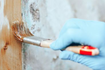 hand holding a brush applying varnish paint on a wooden...
