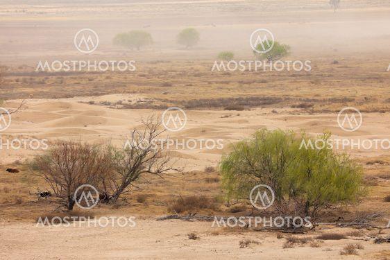 Dust storm on barren plain