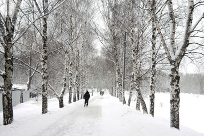 after snowfal