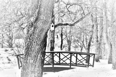 Bro i parken