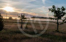 Morgondis över Fide, södra Gotland