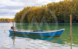 blue wooden boat floating over fresh water canal against...