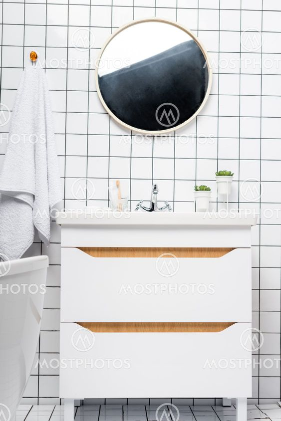 Plants near sink and mirror in modern bathroom