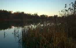An Autumn Lake