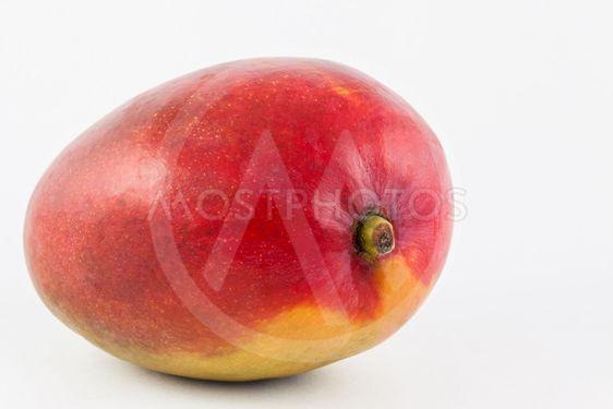 Mango (Mangifera indica) on white background