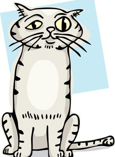 Cute Cat Cartoon