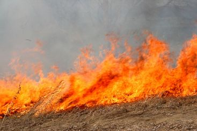 big red fire in field