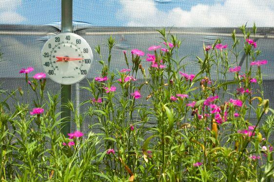 Lämpömittari kasvihuonekaasujen
