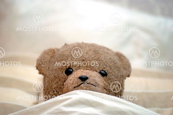 Teddy goes to bed
