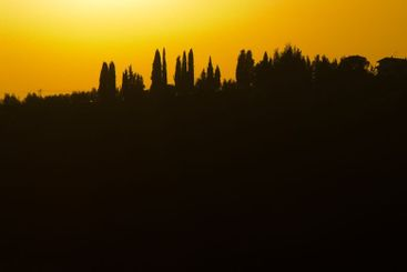 Tuscan landscape in sunset
