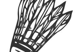 Hand drawn feather shuttlecock, vector illustration