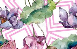 Lotus floral botanical flowers. Watercolor background...