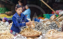 Burmese dry fish seller