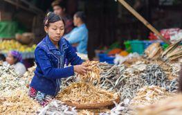 Burmese dry fish seller