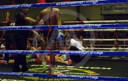 box ring with KO fighter