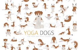 Yoga dogs poses and exercises doing clipart. Funny...