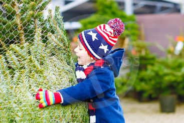 beautiful smiling little boy holding christmas tree