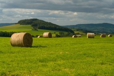 Straw bales in the Auvergne, France