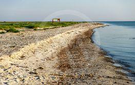 Strandlinjen